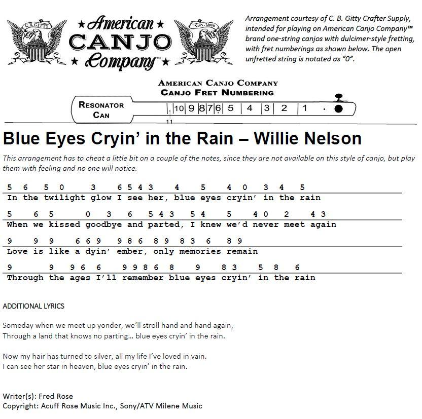 Blue Eyes Cryin In The Rain Willie Nelson