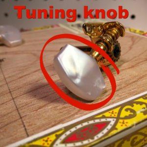 tuning knob on an open gear tuner